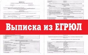 Выписка из ЕРГЮЛ по ИНН: инструкция подачи заявления на получение выписки