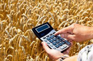 Единый сельскохозяйственный налог в 2018 году: изменения и размер процента